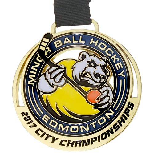 minor_ball_hockey_edmonton_2017